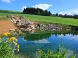 Pozemky Čenkovice - jaro