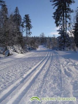 Pozemky Čenkovice - běžecké tratě