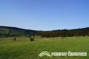 Pozemky Čenkovice - Buková hora