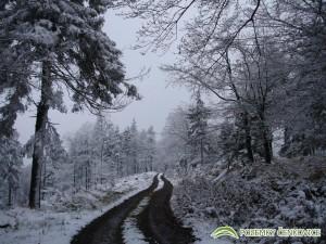 Pozemky Čenkovice - říjnový sníh
